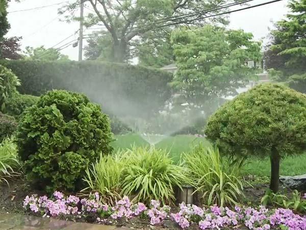 Irrigatori-agricoli-giardino-orto-ravenna