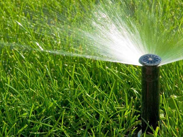 impianto-irrigazione-automatico-goccia-pioggia-imola
