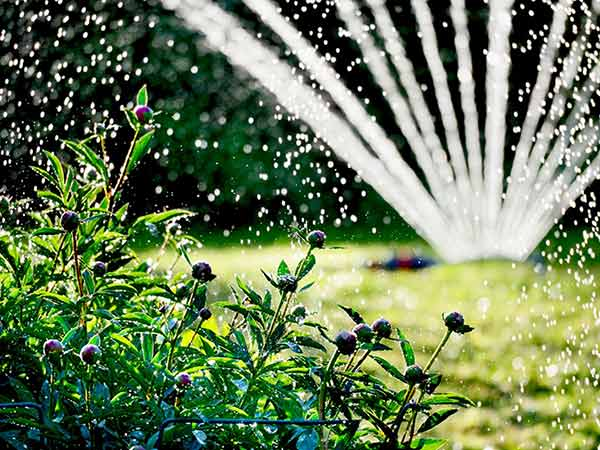 Impianti-irrigazione-ravenna-imola
